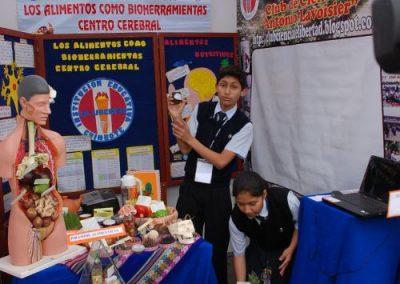 2011-8