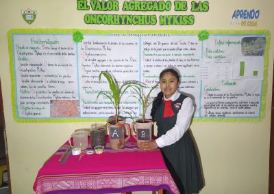 Ayacucho - Científica